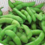 枝豆と大豆の違いって?栄養価は同じ?